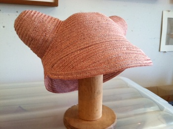 Pussy Hat by Lisa Ventre